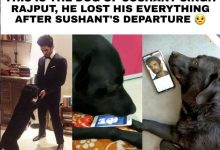 "Remembering Sushant Singh Rajput, pet dog ""Faz"" drowned in pain, these pictures surfaced...(Emotional Video)"