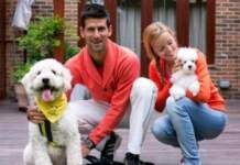 Novak Djokovic and his wife tests positive for COVID-19