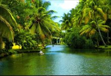 8 best places in Kerala with pictures – You must visit once in your life