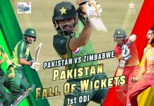 Pakistan vs Zimbabwe 2020 ODI Match at Rawalpindi, Watch LIVE STREAMING!