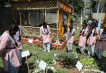 NDMC with Union Ministry of Finance launched Srishti classroom under the Cleanliness Action Plan